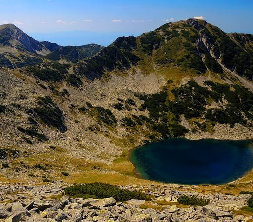Save Pirin